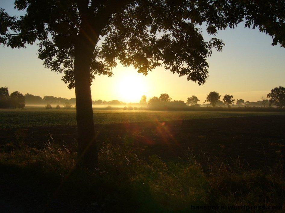 Montag Morgen im Münsterland