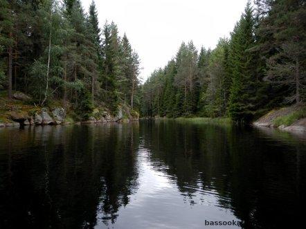 Kurzer Flußabschnitt