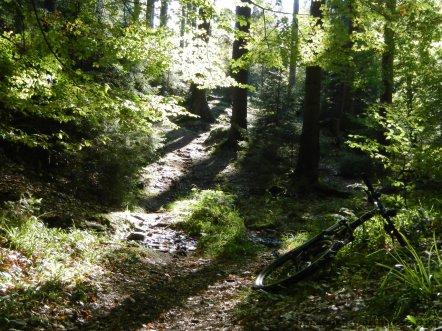 Mountainbike, Hann. Münden