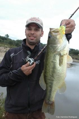 As frentes frias afectam os peixes... Não devem afectar os pescadores