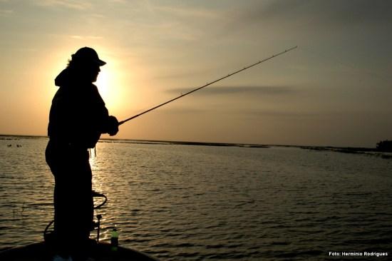 Horas mágicas para a pesca de superfície...