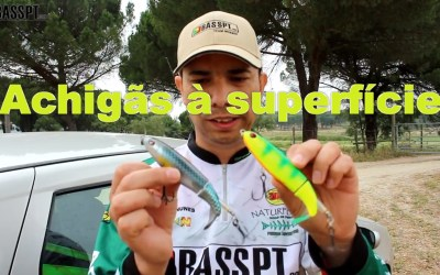 VIDEO – Pesca ao achigã à superfície