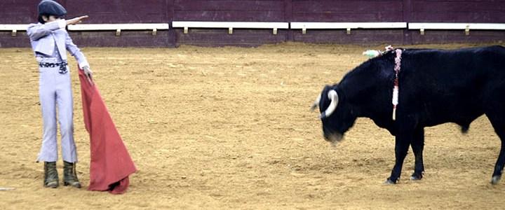Autoridades investigam participação de crianças numa tourada em Vila Boim