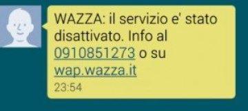 SMS-WAZZA-3-300x134