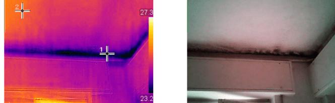 muffa termocamera 2