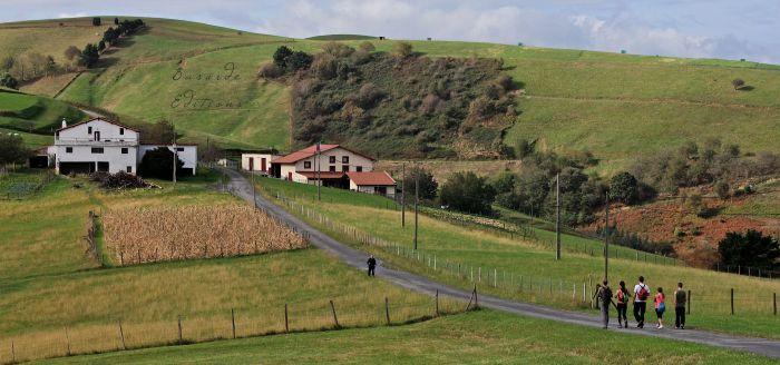 Tras un recorrido por carretera, el camino se desviará por un sendero.