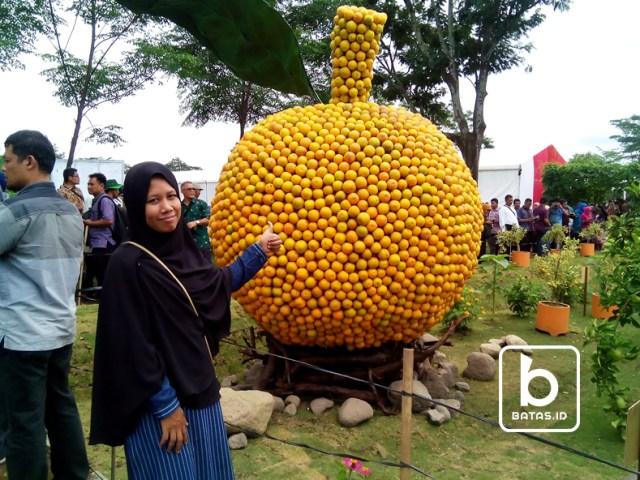 ©batas.id/gunawan wibisono/icon buah jeruk yang diminati pengunjung untuk foto-foto