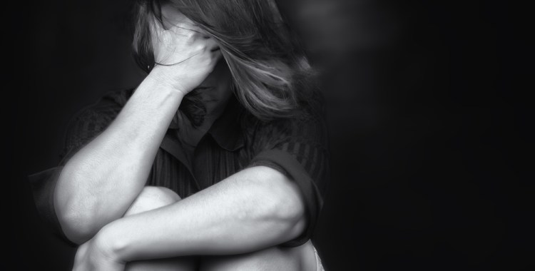 Domestic Violence Protective Order Guides