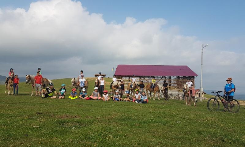 Biciclete.BateSaua.cai.vara.tabere.copii