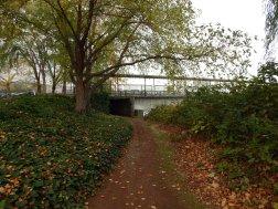 Under the bridge we go
