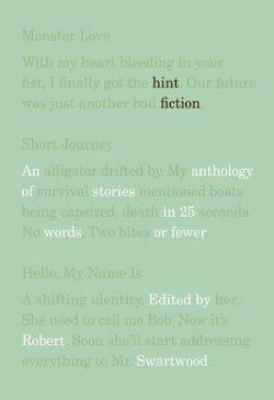 hint-fiction