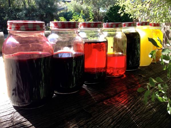 jo-haslauer-natural-infusions-1024x768