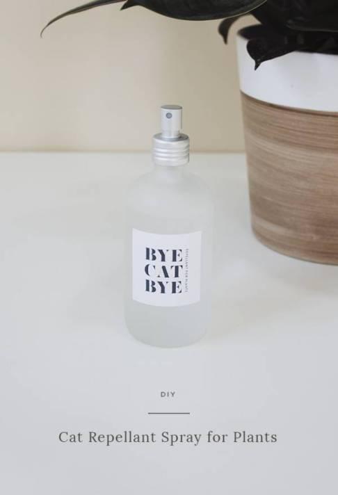 DIY-cat-repellant-spray-almost-makes-perfect