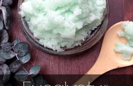 Handmade Gifts  – Eucalyptus  Scrub
