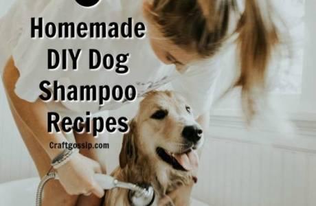 DIY Homemade Dog Shampoo