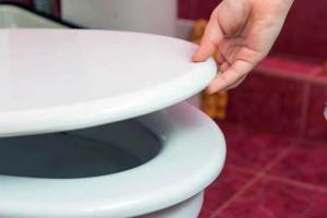 Best Toilet Seat for Toddlers