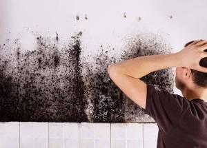 Black Mold Under Tile In Bathroom