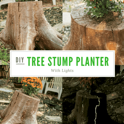How to Create your Own Lighted Tree Stump Planter in 5 Easy Steps