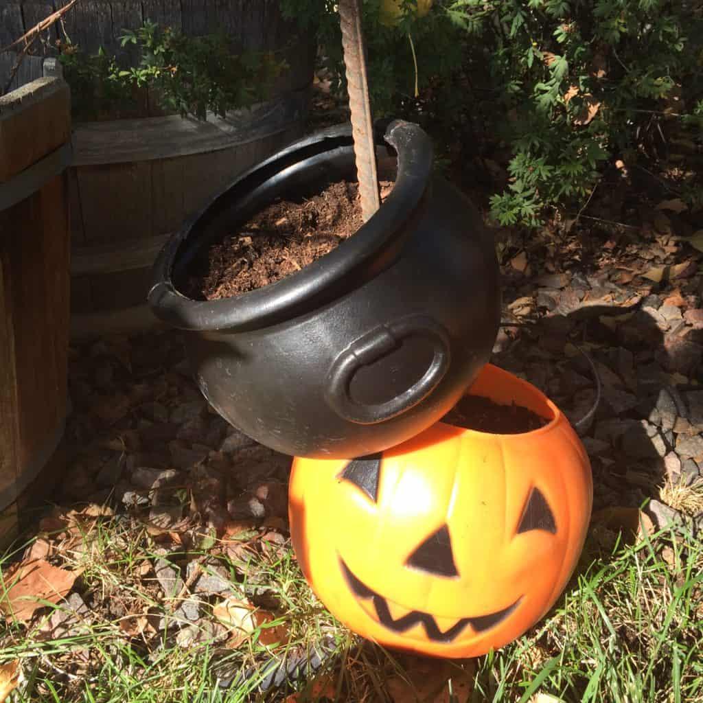 halloween tipsy planters