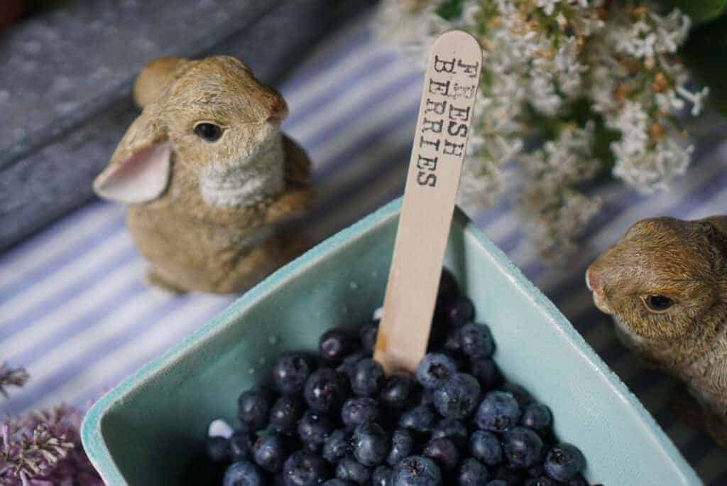 Fresh berries with a Popsicle stick label and a cute bunny centerpiece,