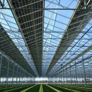 Serres solaires photovoltaïque 82370 Reynies