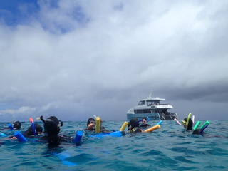Great barrier reef tour, with noodles.