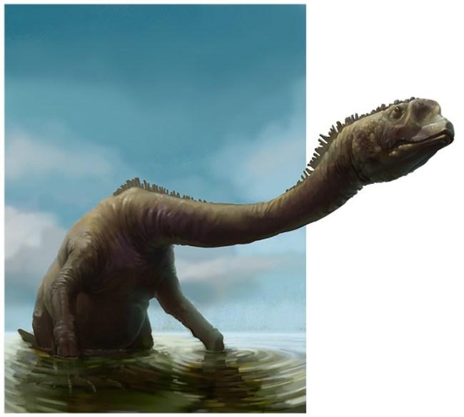 неотитанозаврид
