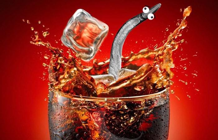 cola worm