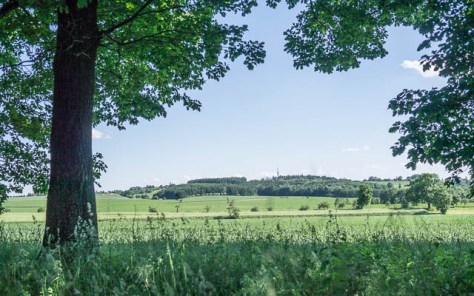 View towards Chlum from the Svweipwald