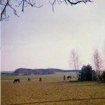 A view from the farm at Bussy, looking towards the French lines, with the Tombe de Ligny in the background.
