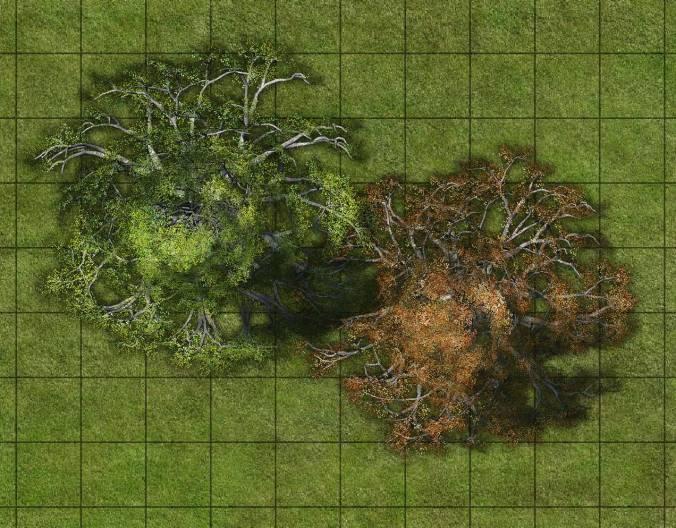 9CE_lime_trees_sample