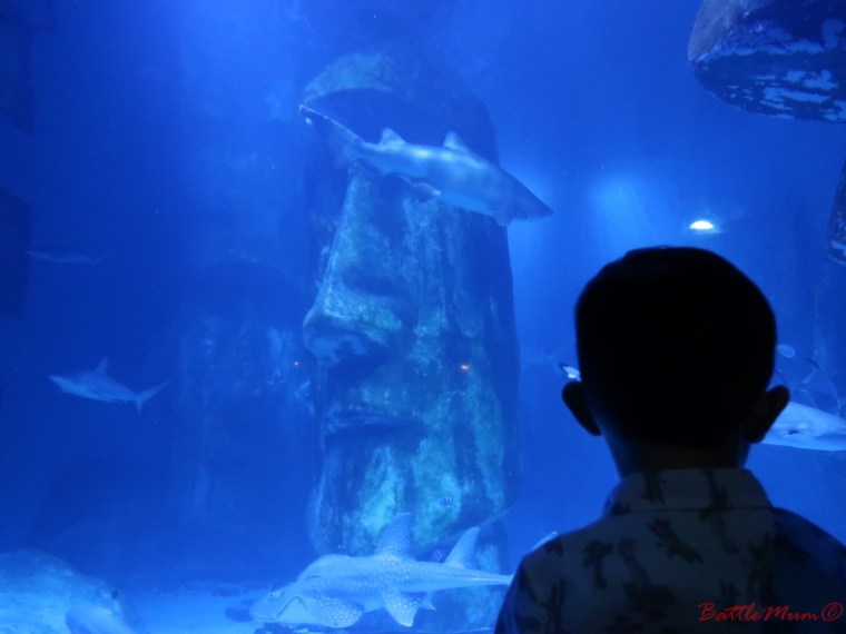 family day in london - the wonderful Easter Island statues in one of the aquariums in SeaLife