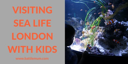 Visiting Sea Life London With Kids and How To Have an Awesome Visit