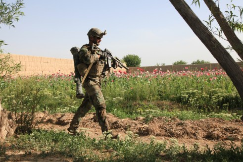 A member of Marine Corps Forces Special Operations Command patrols through poppy fields in Nahr-e Saraj district, in Afghanistan's Helmand province in April. Researchers with the University of Pittsburgh announced that they've been awarded funding to begin an injury prevention and performance optimization program with MARSOC. (Cpl. Kyle McNall/Marine Corps)