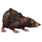 legion_ratmountbrown