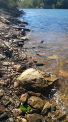 Water lapping on the shore