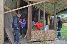 strohballen-workshop-2016-04-02