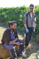 ecotopia-strawbale-workshop-sweden-2017-33