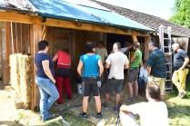 Workshop-2017-08-strawbale-clay-tadelakt50