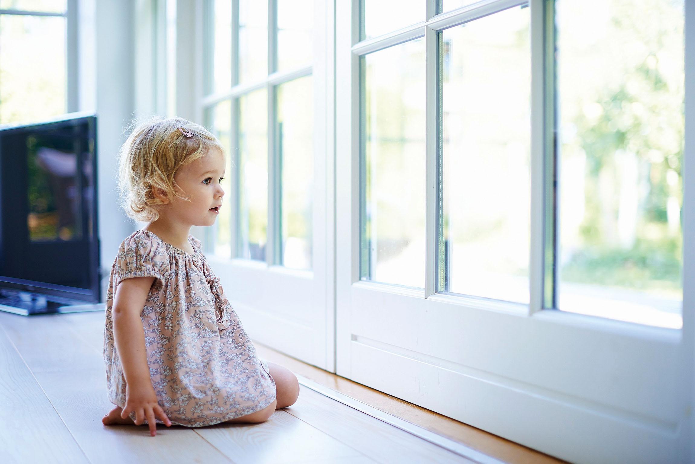 Fenster- und Türdichtungen