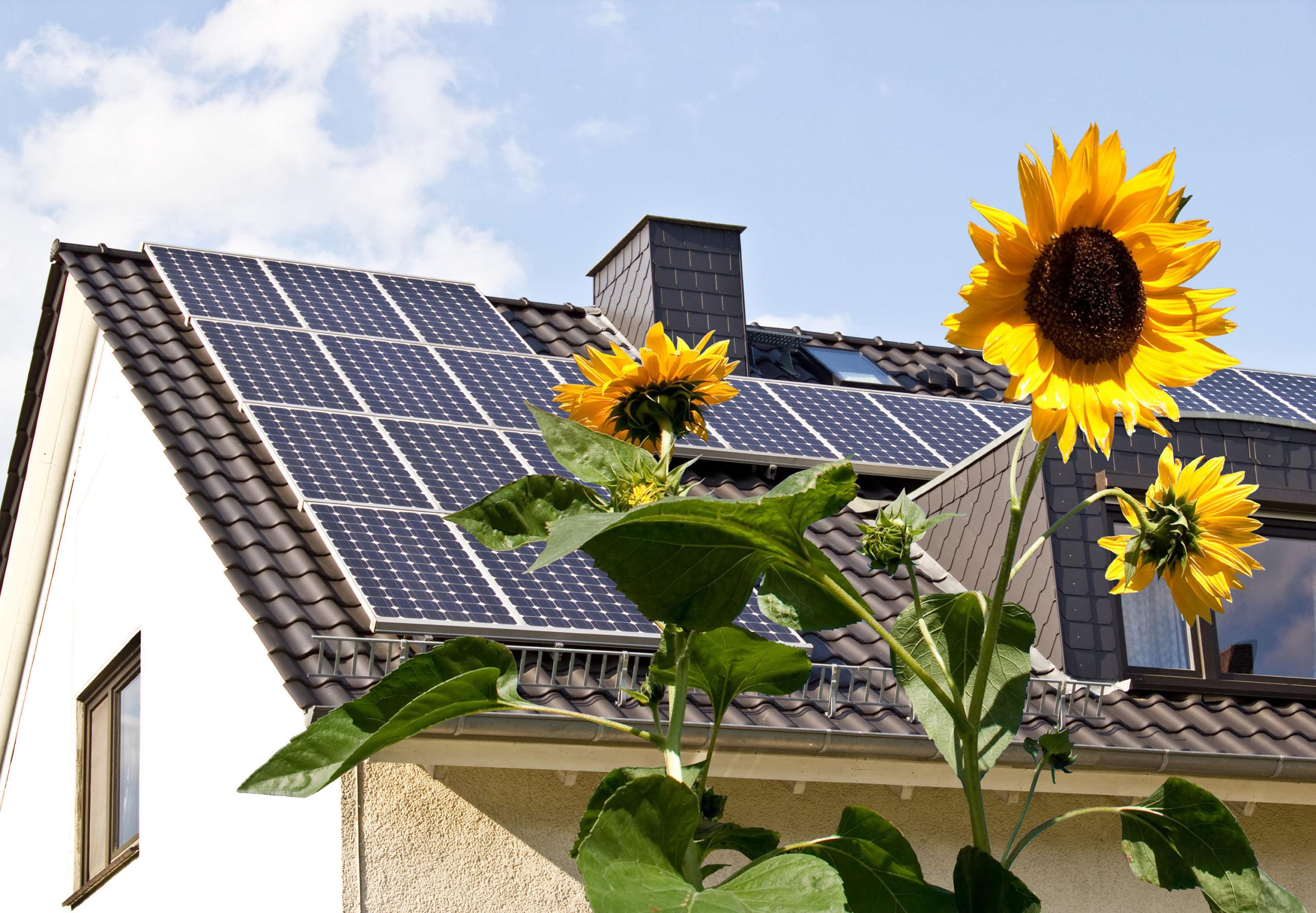 Für Photovoltaik ist fast überall Platz