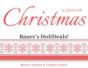 12 Days of Christmas - Bauer's HoliDeals! {December 12 - 24} @ Bauer's Market & Garden Center | La Crescent | Minnesota | United States