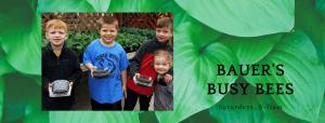 Bauer's Busy Bees - Spring 2020 @ Bauer's Market & Garden Center | La Crescent | Minnesota | United States