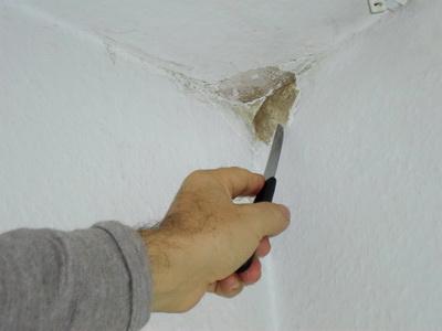 Schimmel entfernen - Wand Tipps vom Schimmelgutachter ...
