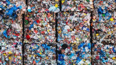 Worrying insights into plastic | Mirage News