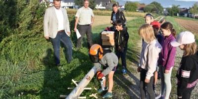 Baunatal, Wald, Rengershausen, Hessenforst, Waldjugendspiele