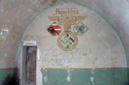 bunker-palmPB200363-2