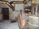 bunker-palmPB200368