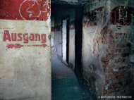 bunker-palmPB200383