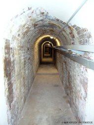 bunker-palmPB200406